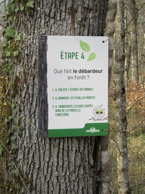 """Vis ma vie de forestier"""