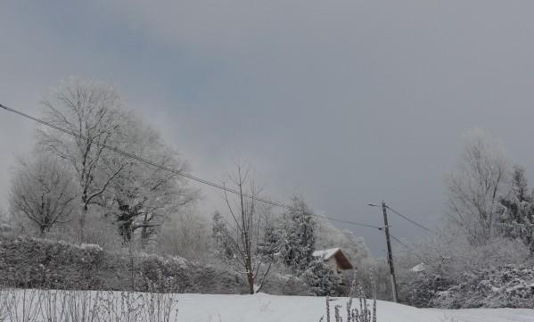 neige janvier 2010 (30)