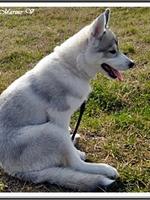 Jaïa (3,5 mois)