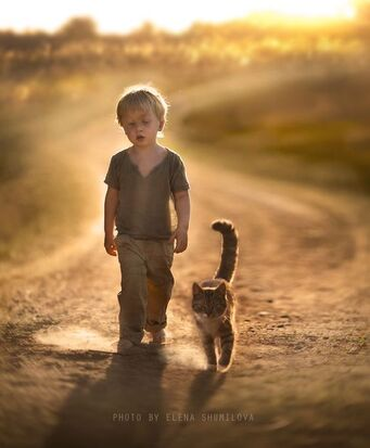 dust on the way.. by Elena Shumilova on 500px   -  #500px #dust #Elena #Shumilova