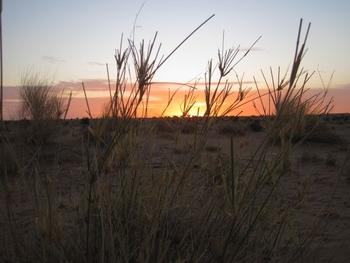 mauritanie route de l'espoir premier bivouac 5