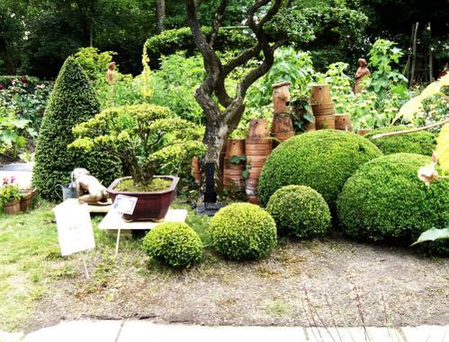 Visite-Les-Jardins-d-Yves---Buis-et-pots---2-06-07-copie-1.jpg