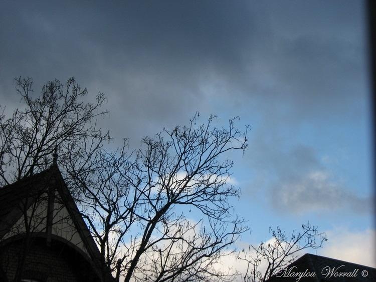 Ciel d'Alsace 397