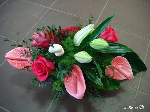 Février, roses et anthuriums