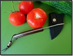 Fixe de cuisine (avec étui cuir) d'Alain Massart...