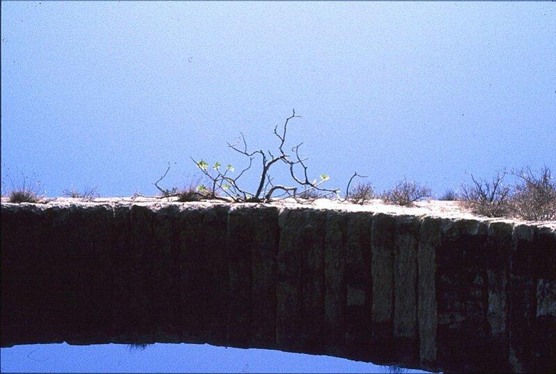 castries-aqueduc-figuier