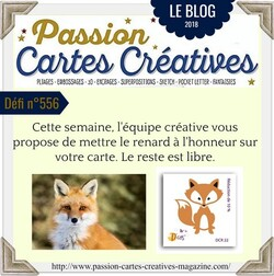 Passion Cartes Créatives#556 !