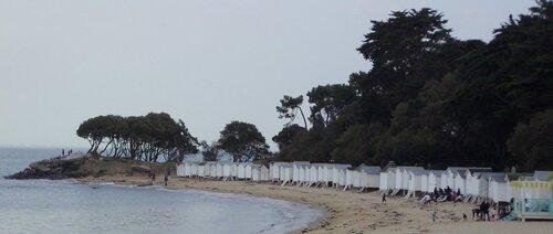 Colliers bord de mer