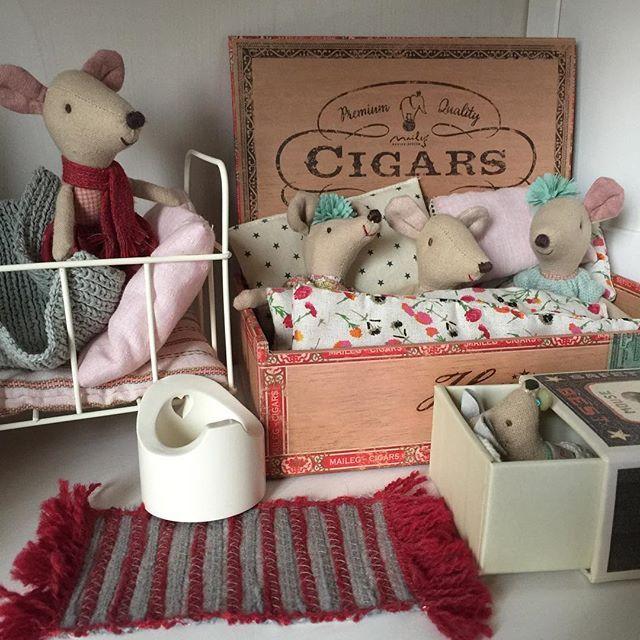 Poppenhuis maileg muizen. Mouse dollhouse (с изображениями ...