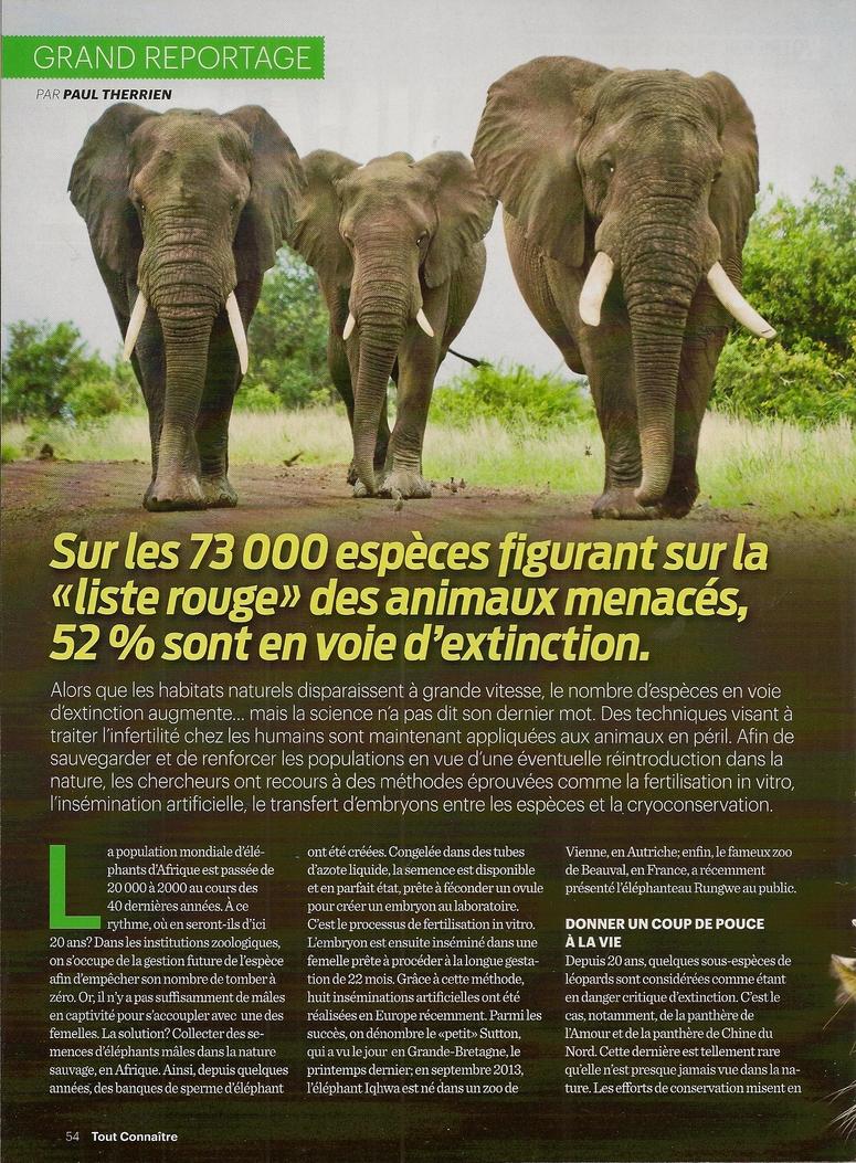 Grand Reportage:  Quand le clonage sauve des espèces (2 pages)