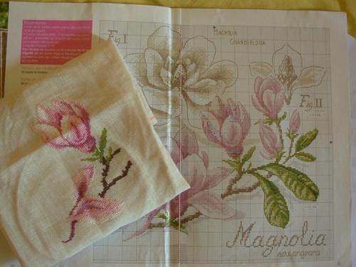 """Etude botanique """"magnolia"""""""