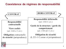 """Résultat de recherche d'images pour """"principe non cumule responsabilités contractuelles délictuelles"""""""