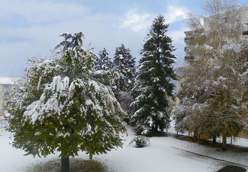 L'hiver à ma fenêtre