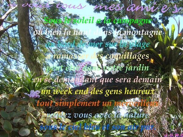 LES 2 ALPES  1/6  08/2006    16/05/2014