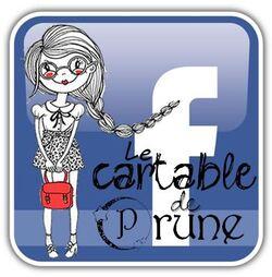 Lancement de ma page Facebook