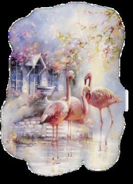 Oiseaux,flamant rose