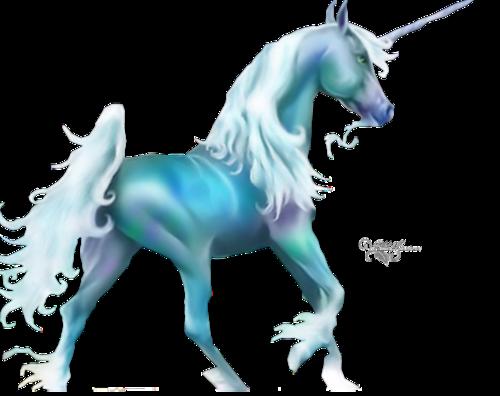 Licornes-cheval