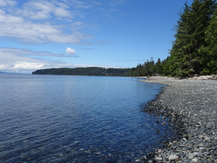 Nouvelles du Canada 113 : Mitchell Bay
