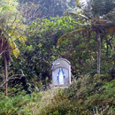 La vierge à flanc de morne - Photo : Yvon