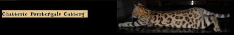 Capture d'écran 2013-04-14 à 20.20.16