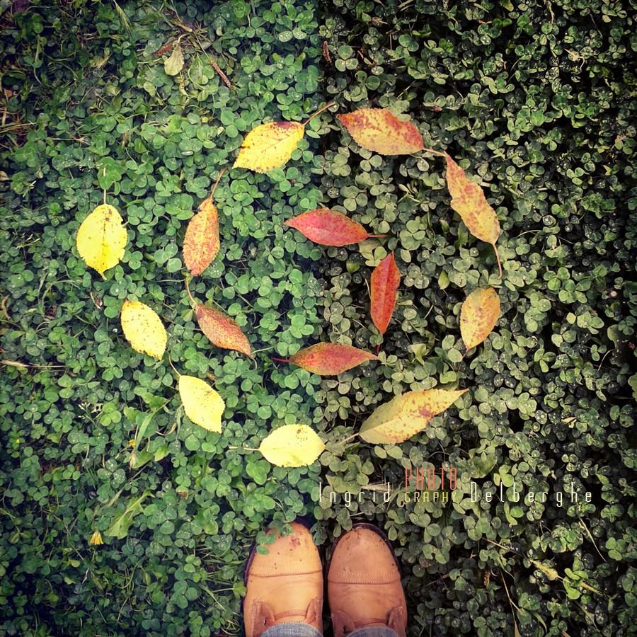 Le-jardin-20130916_182342.jpg