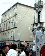 Carnaval de Romans sur Isère 2015...Carmentran même pas mort...7