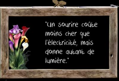 **La belle Vie**Animations