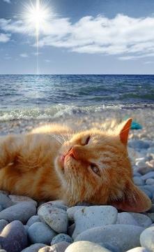 Loving the sun :)