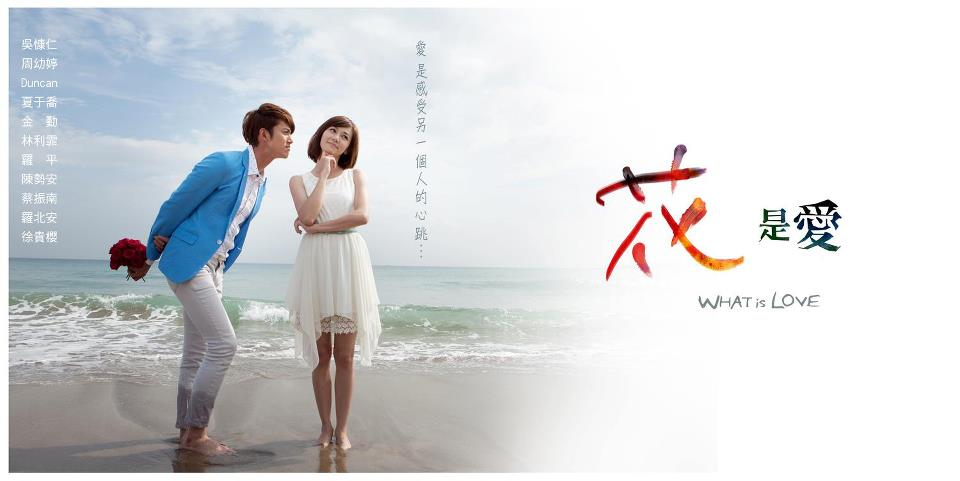 What Is Love (TW-Drama) (2012)