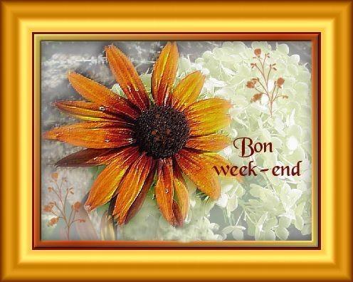 BON WEEK-END !!!