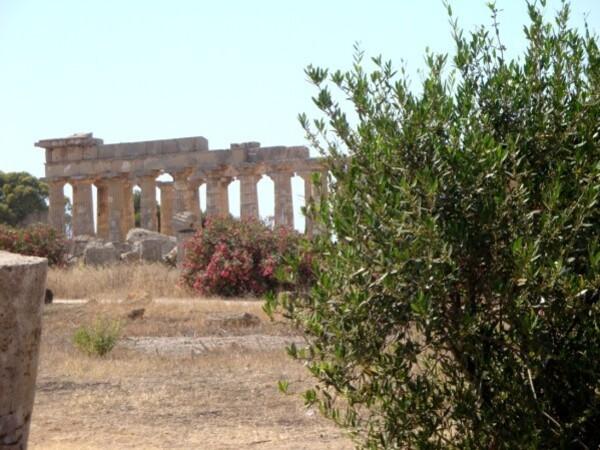 Selinonte, temple E