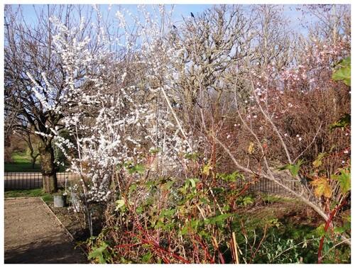 Le printemps arrive.