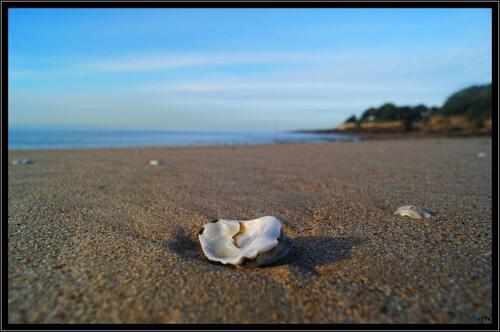 Photos à la mer