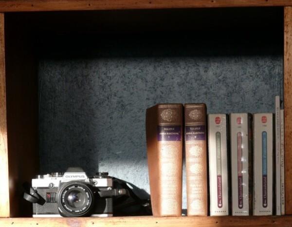 rayon-de-soleil-dans-une-case-de-la-bibliotheque.jpg