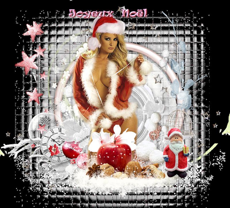*** Joyeux Noël 2 ***