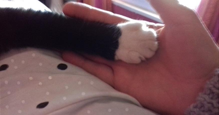 Main dans la main ...
