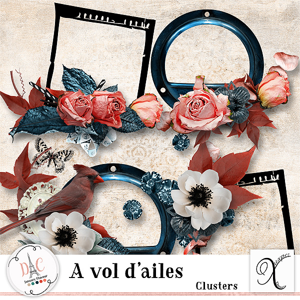 A vol d'ailes Clusters