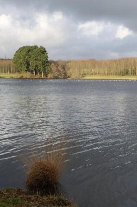 Au lac du Drennec (13)