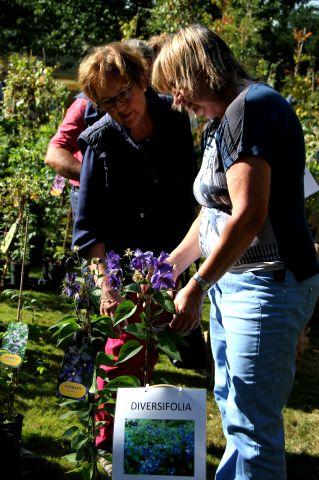Fêtes des plantes en Belgique : 1. La Feuillerie