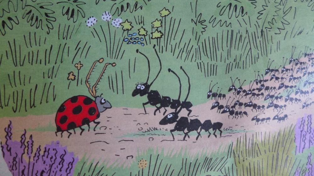 Des nouvelles de mes ennemies, les fourmis...