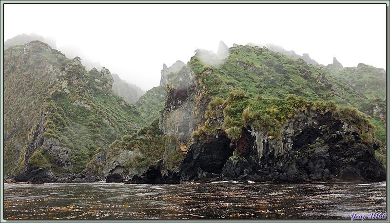 Dell Rocks (The Glen) - Quest Bay - Gough Island - Tristan da Cunha