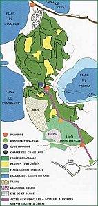 plan_castillon-ffc88.jpg