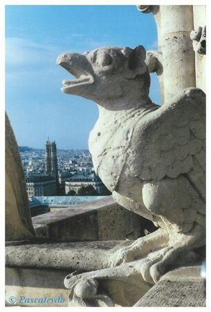 Notre_Dame___les_toits9
