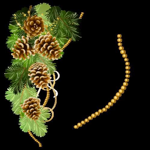 Branche de sapin /1