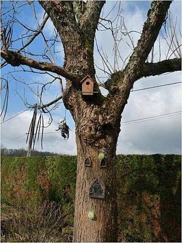 maison-de-l-arbre.jpg
