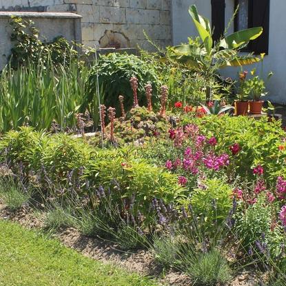 24 juillet 2012 - Déco fleurs
