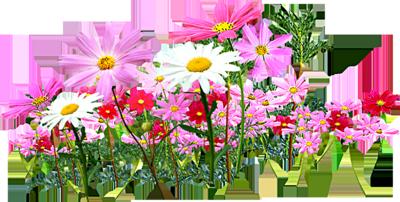 BON MARDI  Flowers-psd24589
