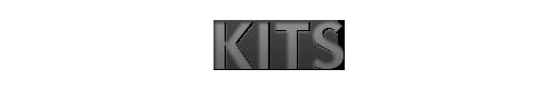 http://ekladata.com/angii-kawaii.eklablog.com/perso/rubriques%20textes/v.2/kitsv.2.png