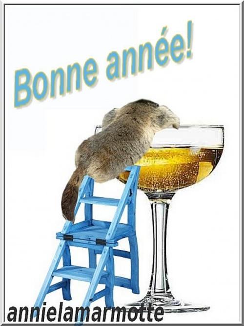 Je vous souhaite un très bon passage en 2013