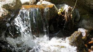 Ruisseau de la Dénave